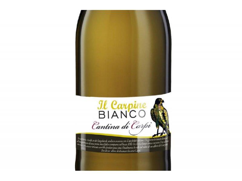 Вино игристое Cantina di Sorbara Il Carpine Bianco Cantina di Carpi IGР Secco Frizzante (Іль Карпіне Бьянко, біле сухе) 11% 0.75л